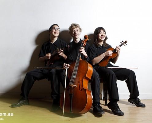 Ferny Grove SHS: Streich-Trio
