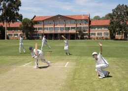 Marryatville High School: Cricket