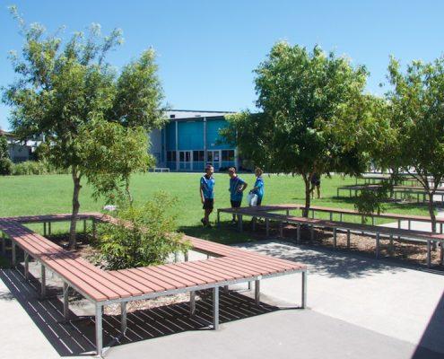 Meridan State College 4