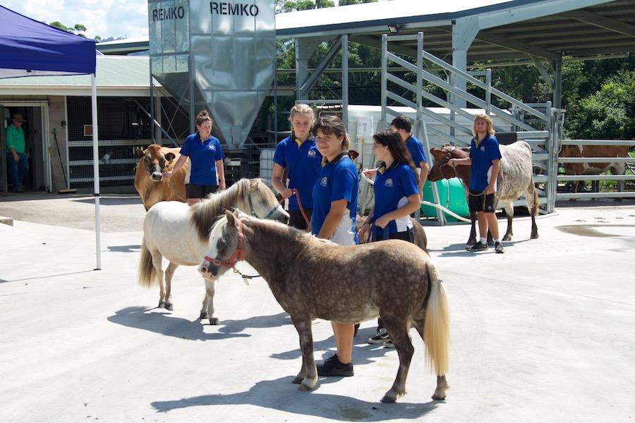 Nambour State College Highschool Australia