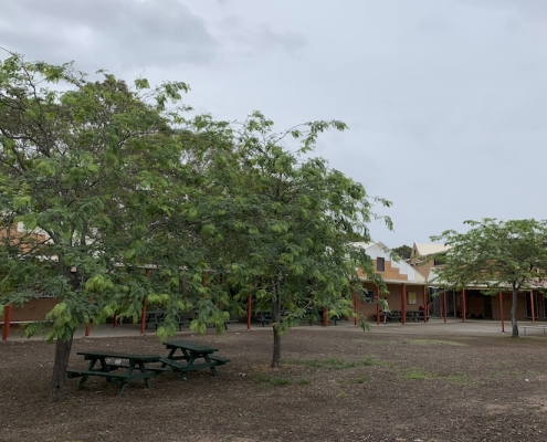 Menai High School 8