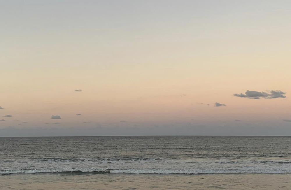 Leben an der Sunshine Coast 4